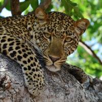 Wyprawa Namibia Legalnomads