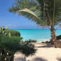 Zanzibar_59