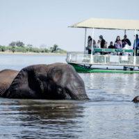 Botswana2015 - Botswana2015_112.jpg