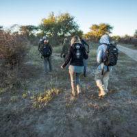 Botswana2015 - Botswana2015_68.jpg