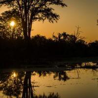 Botswana2015 - Botswana2015_98.jpg