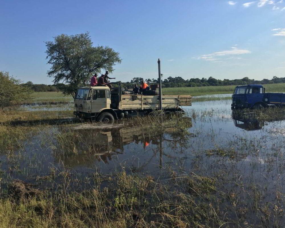 Botswana2017 - Botswana2017_39.jpg