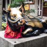 Japonia2019 - Wyprawa_do_Japonii_2019_10.jpg