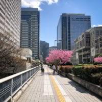 Japonia2019 - Wyprawa_do_Japonii_2019_11.jpg