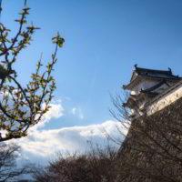 Japonia2019 - Wyprawa_do_Japonii_2019_118.jpg