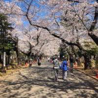 Japonia2019 - Wyprawa_do_Japonii_2019_144.jpg