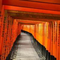 Japonia2019 - Wyprawa_do_Japonii_2019_147.jpg