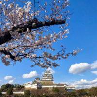 Japonia2019 - Wyprawa_do_Japonii_2019_166.jpg