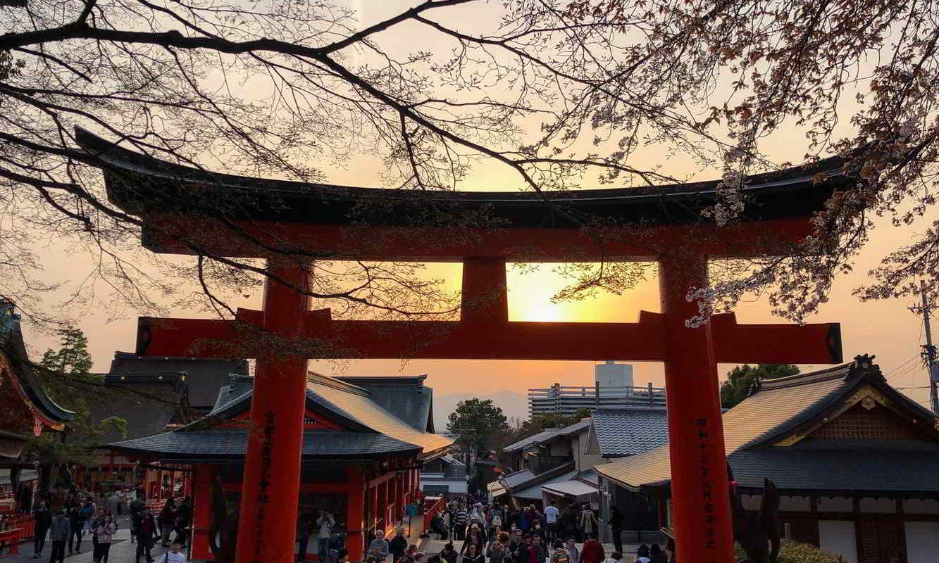 Japonia2019 - Wyprawa_do_Japonii_2019_240.jpg