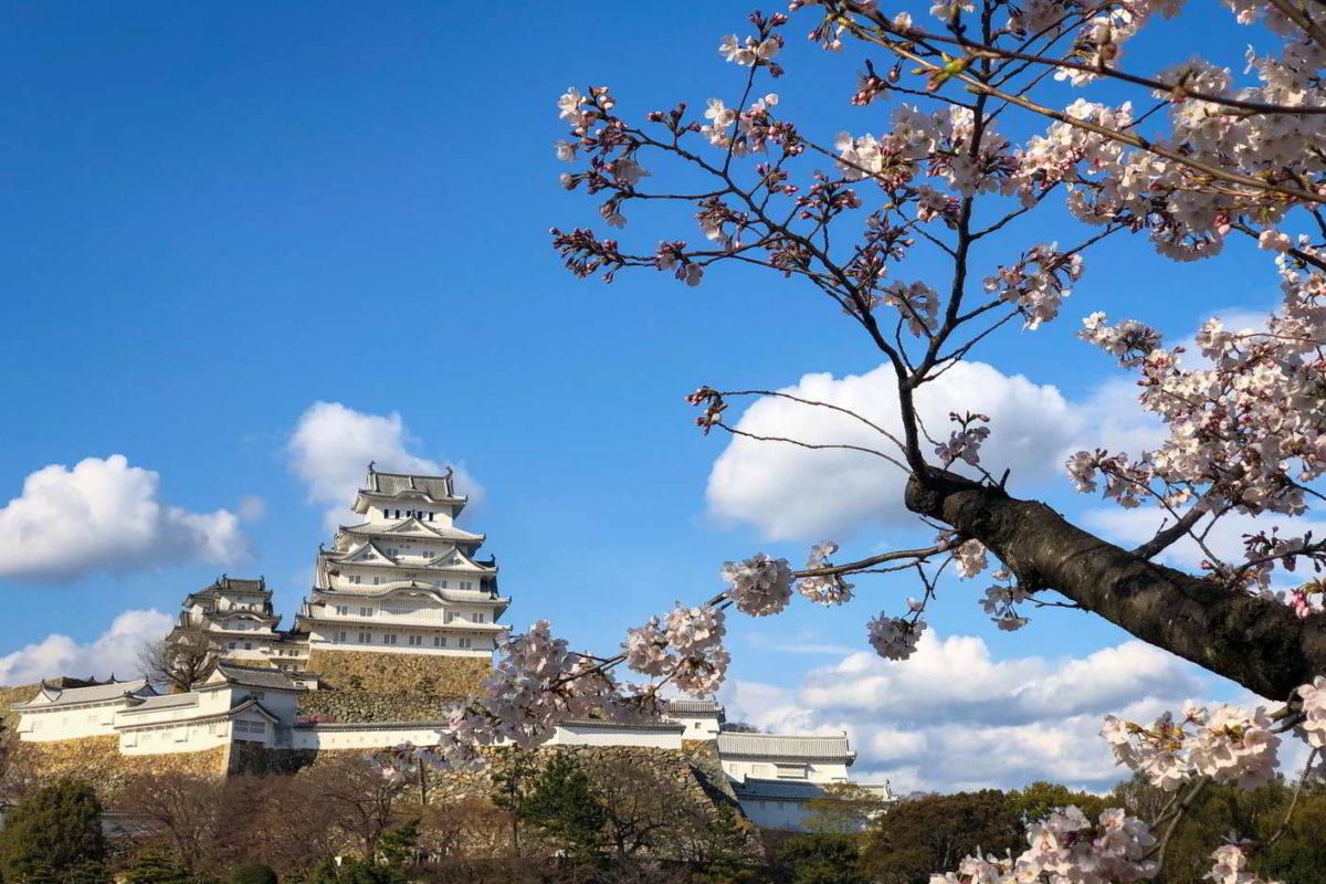Japonia2019 - Wyprawa_do_Japonii_2019_264.jpg