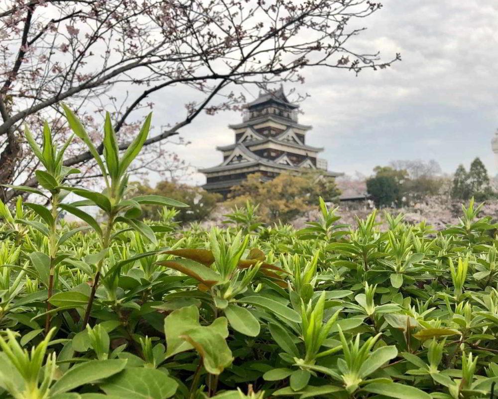 Japonia2019 - Wyprawa_do_Japonii_2019_282.jpg