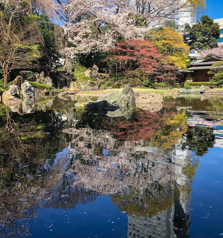 Japonia2019 - Wyprawa_do_Japonii_2019_291.jpg
