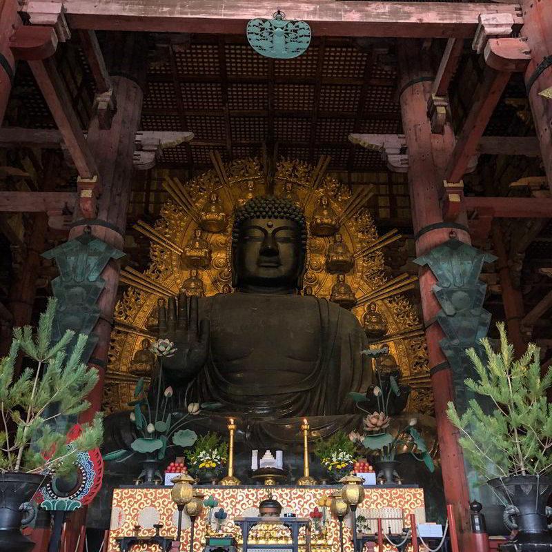Japonia2019 - Wyprawa_do_Japonii_2019_327.jpg