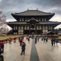 Japonia2019 - Wyprawa_do_Japonii_2019_72.jpg