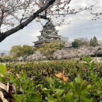 Japonia2019 - Wyprawa_do_Japonii_2019_84.jpg