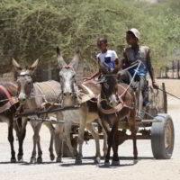 Namibia2018jesien - Wyprawa_do_Namibia_jesien_2018_115.jpg