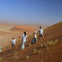 Namibia2018jesien - Wyprawa_do_Namibia_jesien_2018_122.jpg