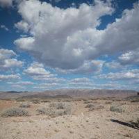 Namibia_luty2019 - Wyprawa_do_Namibia_100.jpg