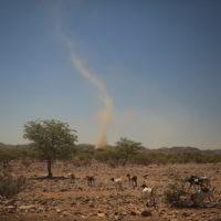 Namibia_luty2019 - Wyprawa_do_Namibia_85.jpg