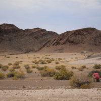 Namibia_luty2019 - Wyprawa_do_Namibia_92.jpg