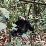 uganda2018 - Wyprawa_do_Ugandy_2018_55.jpg