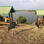 uganda2018 - Wyprawa_do_Ugandy_2018_63.jpg