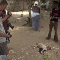 benin2012 - Wyprawa_do_Beninu_-2012_23.jpg