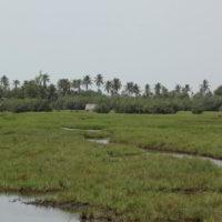 benin2012 - Wyprawa_do_Beninu_-2012_262.jpg