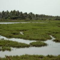 benin2012 - Wyprawa_do_Beninu_-2012_49.jpg