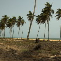 benin2012 - Wyprawa_do_Beninu_-2012_56.jpg