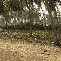benin2012 - Wyprawa_do_Beninu_-2012_61.jpg