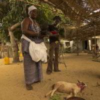 benin2012 - Wyprawa_do_Beninu_-2012_70.jpg