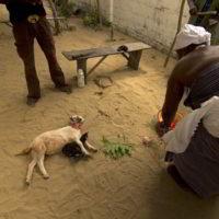 benin2012 - Wyprawa_do_Beninu_-2012_73.jpg