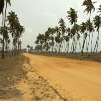 benin2012 - Wyprawa_do_Beninu_-2012_79.jpg