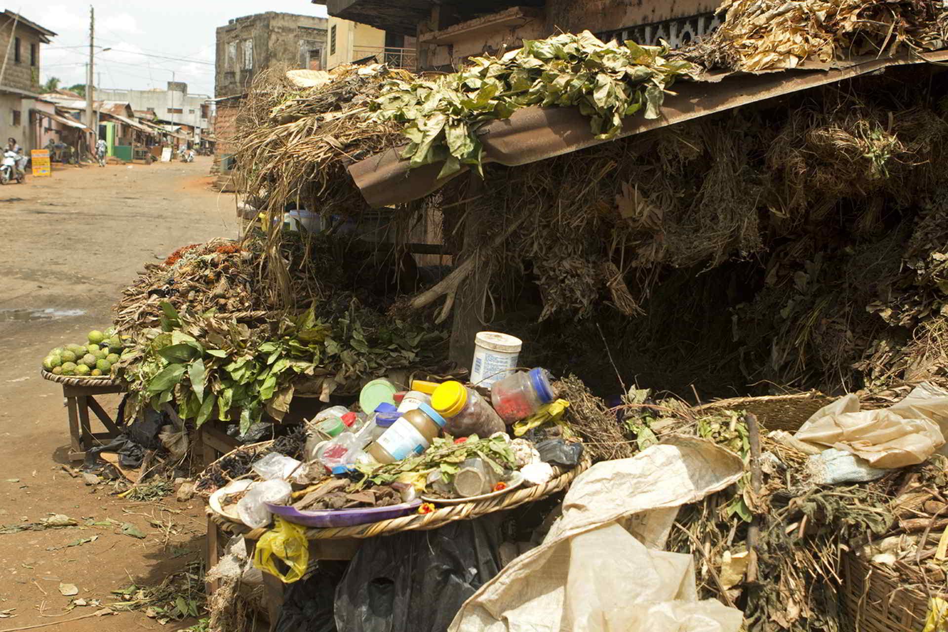 benin2012 - Wyprawa_do_Beninu_-2012_81.jpg