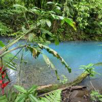 kostaryka - Kostaryka_PuraVida_55.jpg