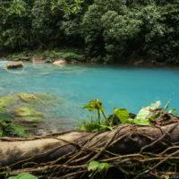 kostaryka - Kostaryka_PuraVida_75.jpg