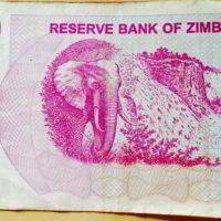 waluta_Zimbabwe - waluta_zimbabwe_16.jpg